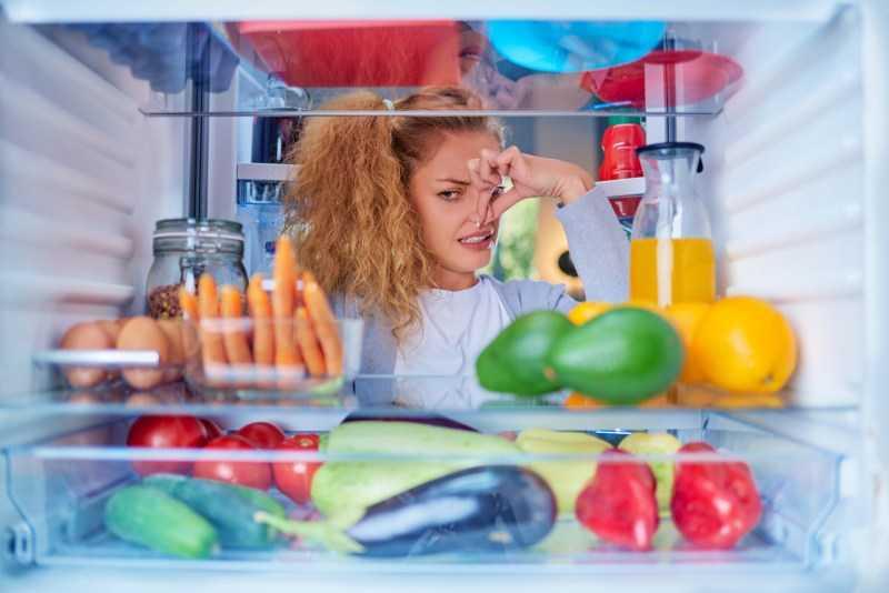 Запах в холодильнике — обзоры популярных способов очистки и профилактики от запаха, необходимые средства и продукты